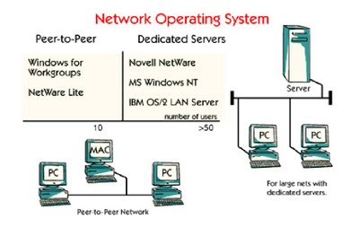 an analysis of network operating systems netware and windows nt for business application Microsoft windows nt (network termination) is a kind of operating system developed by microsoft microsoft hires a few staffs from digital equipment corporation to develop this new system many features of this system have showed the early conceptions with vms, rsx-11, and dec windows nt is the operating system for the workstation.